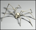 Spider100- zdjęcie